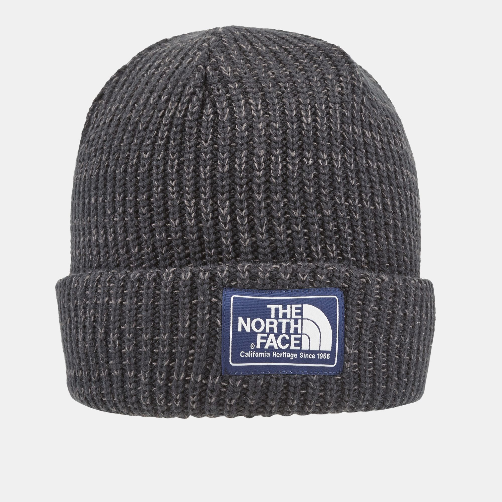 the north face salty dog