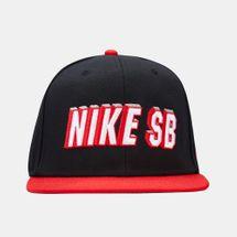 Nike SB Pro Cap