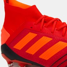 adidas Men's Predator 19.1 Firm Ground Football Shoe, 1448410