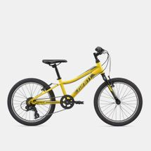 Giant Kids' XTC Jr. 20 Lite Bike