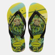 Havaianas Men's IPE Flip Flops